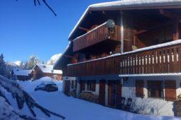 Les Sapins Chatel Ski Chalet